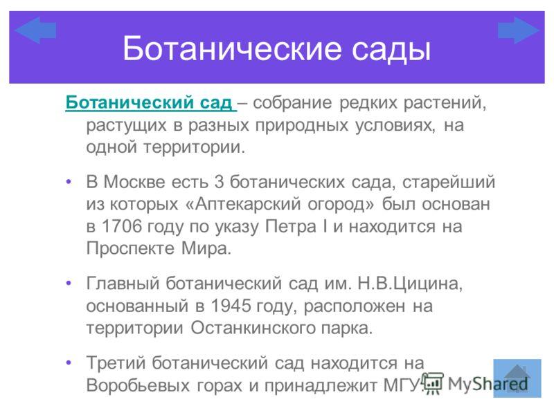 Ботанический сад Ботанический сад – собрание редких растений, растущих в разных природных условиях, на одной территории. В Москве есть 3 ботанических сада, старейший из которых «Аптекарский огород» был основан в 1706 году по указу Петра I и находится