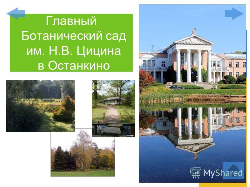 Главный Ботанический сад им. Н.В. Цицина в Останкино