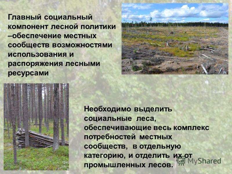 Необходимо выделить социальные леса, обеспечивающие весь комплекс потребностей местных сообществ, в отдельную категорию, и отделить их от промышленных лесов. Главный социальный компонент лесной политики –обеспечение местных сообществ возможностями ис