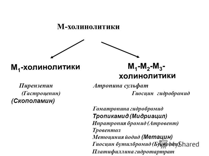 М-холинолитики М 1 -холинолитики М 1 -М 2 -М 3 - холинолитики Пирензепин Атропина сульфат (Гастроцепин) Гиосцин гидробромид (Скополамин) Гоматропина гидробромид Тропикамид (Мидриацил) Ипратропия бромид (Атровент) Тровентол Метоциния йодид (Метацин) Г