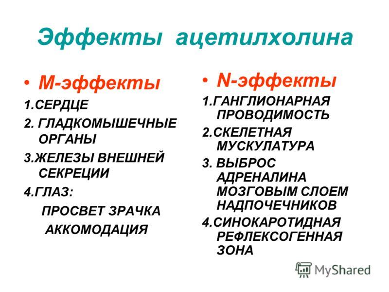 Эффекты ацетилхолина М-эффекты 1.СЕРДЦЕ 2. ГЛАДКОМЫШЕЧНЫЕ ОРГАНЫ 3.ЖЕЛЕЗЫ ВНЕШНЕЙ СЕКРЕЦИИ 4.ГЛАЗ: ПРОСВЕТ ЗРАЧКА АККОМОДАЦИЯ N-эффекты 1.ГАНГЛИОНАРНАЯ ПРОВОДИМОСТЬ 2.СКЕЛЕТНАЯ МУСКУЛАТУРА 3. ВЫБРОС АДРЕНАЛИНА МОЗГОВЫМ СЛОЕМ НАДПОЧЕЧНИКОВ 4.СИНОКАРОТ