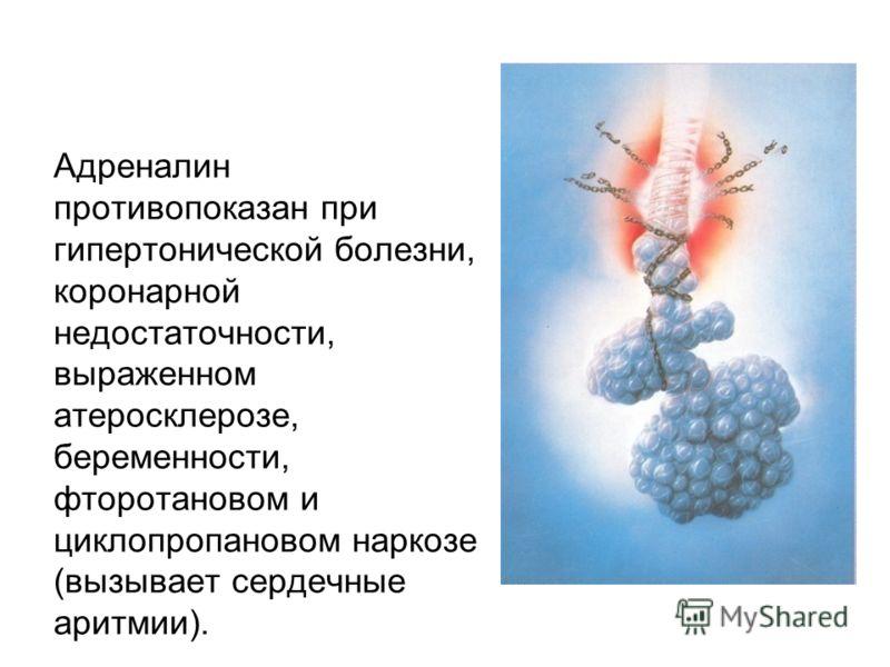 Адреналин противопоказан при гипертонической болезни, коронарной недостаточности, выраженном атеросклерозе, беременности, фторотановом и циклопропановом наркозе (вызывает сердечные аритмии).