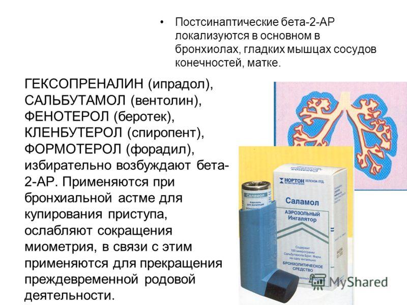 Постсинаптические бета-2-АР локализуются в основном в бронхиолах, гладких мышцах сосудов конечностей, матке. ГЕКСОПРЕНАЛИН (ипрадол), САЛЬБУТАМОЛ (вентолин), ФЕНОТЕРОЛ (беротек), КЛЕНБУТЕРОЛ (спиропент), ФОРМОТЕРОЛ (форадил), избирательно возбуждают