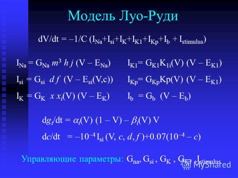 Модель Луо-Руди I Na = G Na m 3 h j (V – E Na ) I si = G si d f (V – E si (V,c)) I K = G K x x i (V) (V – E K ) I K1 = G K1 K 1i (V) (V – E K1 ) I Kp = G Kp Kp(V) (V – E K1 ) I b = G b (V – E b ) dg i /dt = i (V) (1 – V) – i (V) V dc/dt = –10 –4 I si