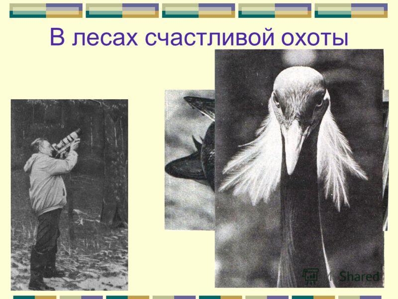 «Санитар» «Щука ждет. Ее никому не видно и не слышно, а она слышит каждый рыбий «шаг». Ей не нужны здоровые рыбки, пусть куролесят хоть у самого носа. Она ждет, когда послышатся неверные «шаги» рыбки больной. Стоит рыбке «захромать» - хоть на один пл