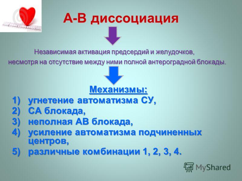 A-В диссоциация Механизмы: 1)угнетение автоматизма СУ, 2)СА блокада, 3)неполная AВ блокада, 4)усиление автоматизма подчиненных центров, 5)различные комбинации 1, 2, 3, 4. Независимая активация предсердий и желудочков, Независимая активация предсердий