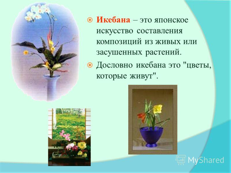 Икебана – это японское искусство составления композиций из живых или засушенных растений. Дословно икебана это цветы, которые живут.