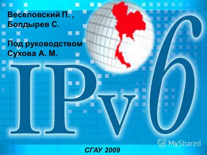 Веселовский П., Болдырев С. Под руководством Сухова А. М. СГАУ 2009