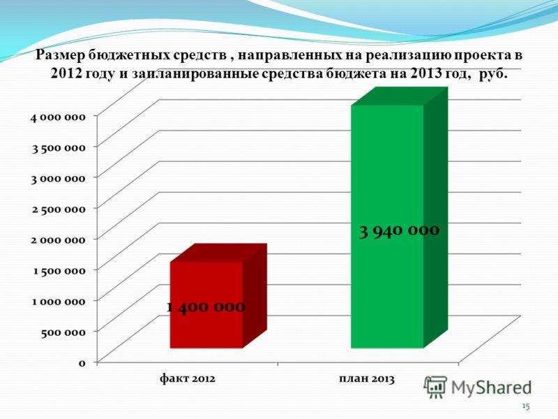 15 Размер бюджетных средств, направленных на реализацию проекта в 2012 году и запланированные средства бюджета на 2013 год, руб.