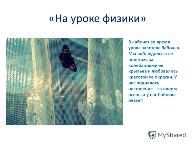 «На уроке физики» В кабинет во время урока залетела бабочка. Мы наблюдали за ее полетом, за колебаниями ее крыльев и любовались красотой ее окраски. У нас поднялось настроение – за окном осень, а у нас бабочка летает!