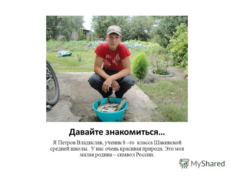 Давайте знакомиться… Я Петров Владислав, ученик 8 –го класса Шакинской средней школы. У нас очень красивая природа. Это моя малая родина – символ России.