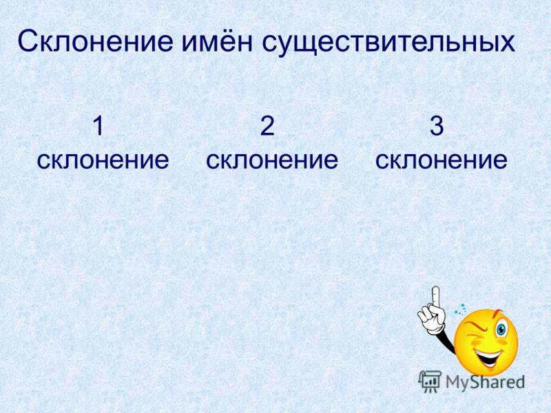 Склонение имён существительных 1 склонение 3 склонение 2 склонение