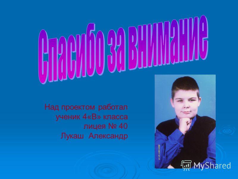 Над проектом работал ученик 4«В» класса лицея 40 Лукаш Александр