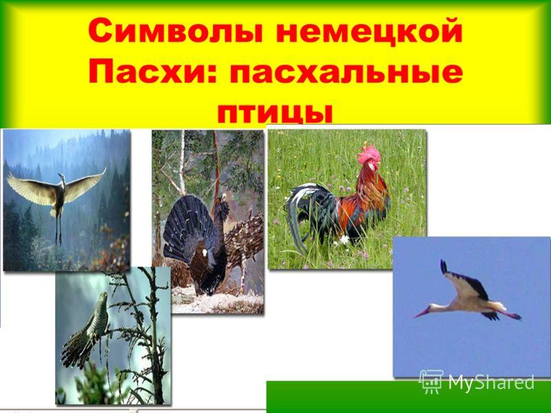 Символы немецкой Пасхи: пасхальные птицы