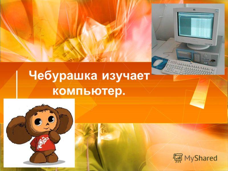 Чебурашка изучает компьютер.