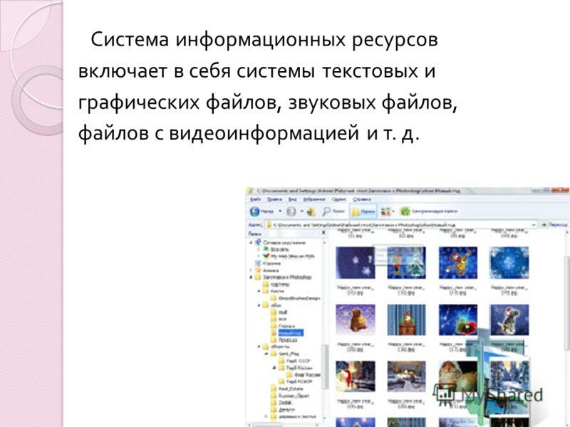 Система информационных ресурсов включает в себя системы текстовых и графических файлов, звуковых файлов, файлов с видеоинформацией и т. д.