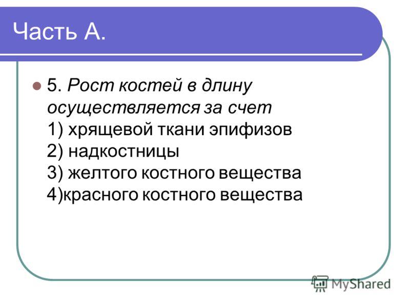 Часть А. 5. Рост костей в длину осуществляется за счет 1) хрящевой ткани эпифизов 2) надкостницы 3) желтого костного вещества 4)красного костного вещества