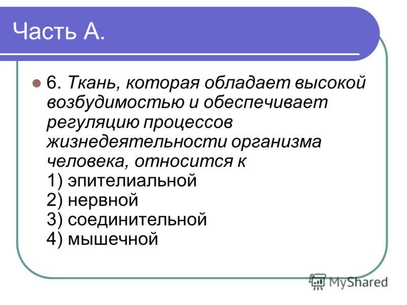 Часть А. 6. Ткань, которая обладает высокой возбудимостью и обеспечивает регуляцию процессов жизнедеятельности организма человека, относится к 1) эпителиальной 2) нервной 3) соединительной 4) мышечной