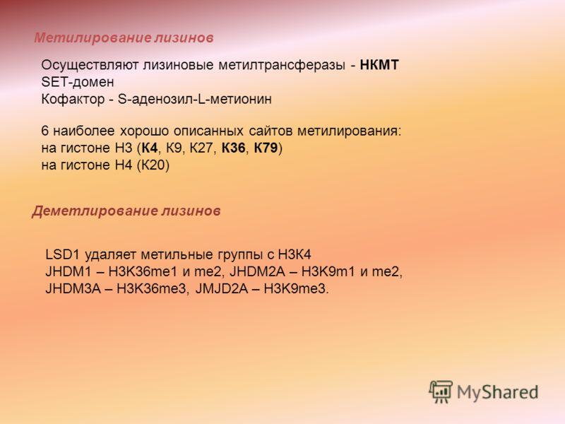 Метилирование лизинов Осуществляют лизиновые метилтрансферазы - НКМТ SET-домен Кофактор - S-аденозил-L-метионин 6 наиболее хорошо описанных сайтов метилирования: на гистоне Н3 (К4, К9, К27, К36, К79) на гистоне Н4 (К20) Деметлирование лизинов LSD1 уд