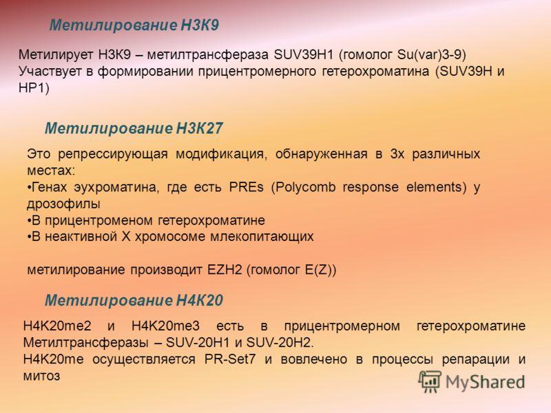 Метилирование Н4К20 H4K20me2 и H4K20me3 есть в прицентромерном гетерохроматине Метилтрансферазы – SUV-20H1 и SUV-20H2. H4K20me осуществляется PR-Set7 и вовлечено в процессы репарации и митоз Это репрессирующая модификация, обнаруженная в 3х различных
