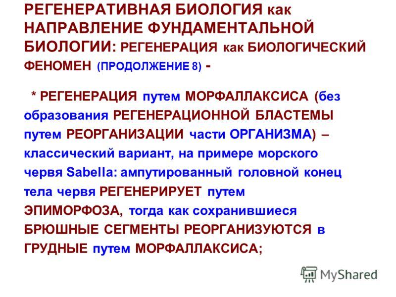 РЕГЕНЕРАТИВНАЯ БИОЛОГИЯ как НАПРАВЛЕНИЕ ФУНДАМЕНТАЛЬНОЙ БИОЛОГИИ: РЕГЕНЕРАЦИЯ как БИОЛОГИЧЕСКИЙ ФЕНОМЕН (ПРОДОЛЖЕНИЕ 8) - * РЕГЕНЕРАЦИЯ путем МОРФАЛЛАКСИСА (без образования РЕГЕНЕРАЦИОННОЙ БЛАСТЕМЫ путем РЕОРГАНИЗАЦИИ части ОРГАНИЗМА) – классический