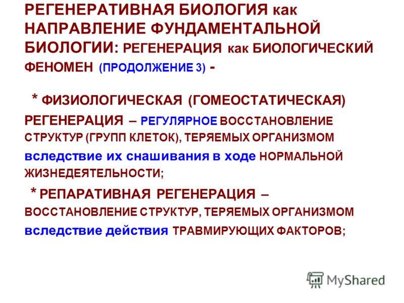 РЕГЕНЕРАТИВНАЯ БИОЛОГИЯ как НАПРАВЛЕНИЕ ФУНДАМЕНТАЛЬНОЙ БИОЛОГИИ: РЕГЕНЕРАЦИЯ как БИОЛОГИЧЕСКИЙ ФЕНОМЕН (ПРОДОЛЖЕНИЕ 3) - * ФИЗИОЛОГИЧЕСКАЯ (ГОМЕОСТАТИЧЕСКАЯ) РЕГЕНЕРАЦИЯ – РЕГУЛЯРНОЕ ВОССТАНОВЛЕНИЕ СТРУКТУР (ГРУПП КЛЕТОК), ТЕРЯЕМЫХ ОРГАНИЗМОМ вследс