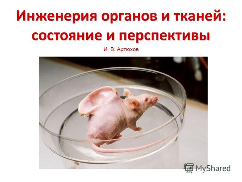 Инженерия органов и тканей: состояние и перспективы И. В. Артюхов