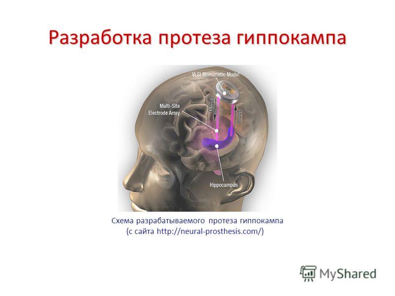 Разработка протеза гиппокампа Схема разрабатываемого протеза гиппокампа (с сайта http://neural-prosthesis.com/)