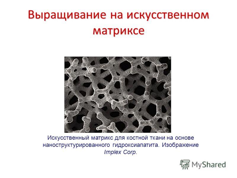 Выращивание на искусственном матриксе Искусственный матрикс для костной ткани на основе наноструктурированного гидроксиапатита. Изображение Implex Corp.