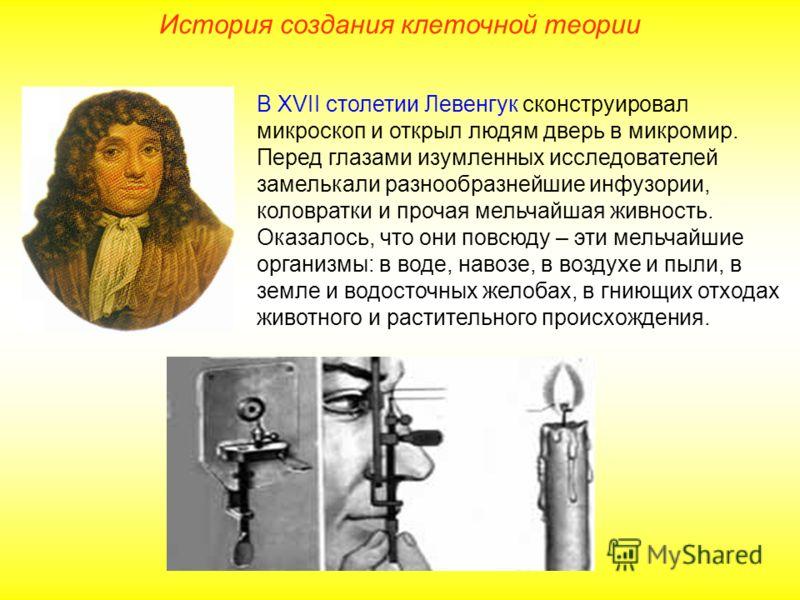 В XVII столетии Левенгук сконструировал микроскоп и открыл людям дверь в микромир. Перед глазами изумленных исследователей замелькали разнообразнейшие инфузории, коловратки и прочая мельчайшая живность. Оказалось, что они повсюду – эти мельчайшие орг