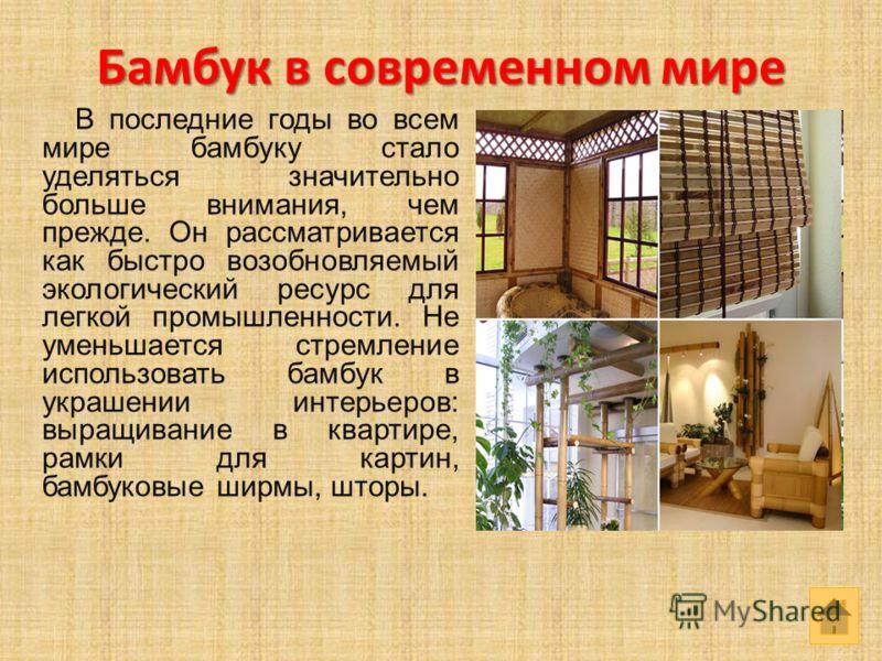 Бамбук в современном мире В последние годы во всем мире бамбуку стало уделяться значительно больше внимания, чем прежде. Он рассматривается как быстро возобновляемый экологический ресурс для легкой промышленности. Не уменьшается стремление использова