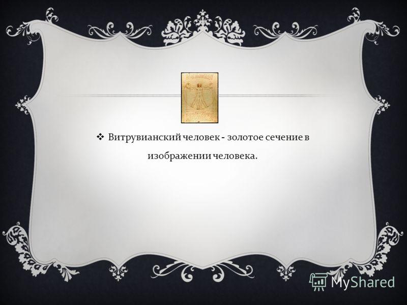 Витрувианский человек - золотое сечение в изображении человека.