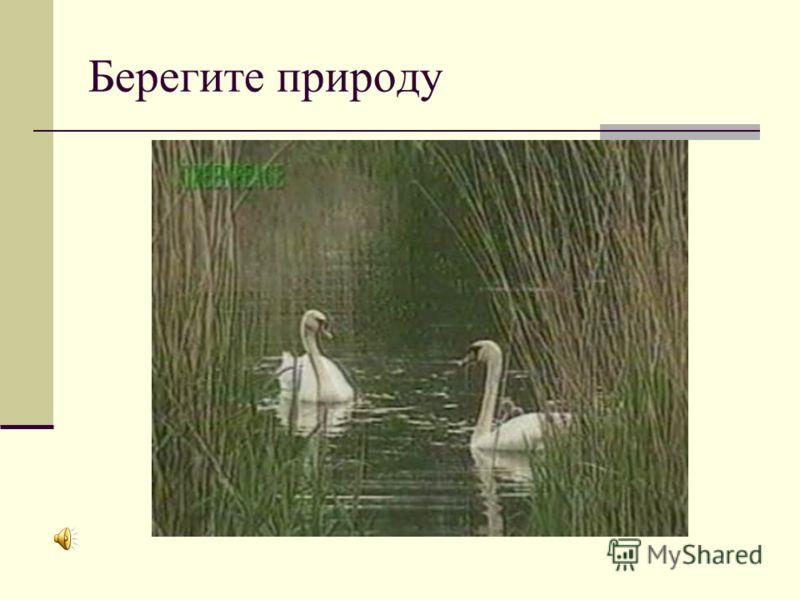 Путешествие по карте России (4 класс) - презентация по ...