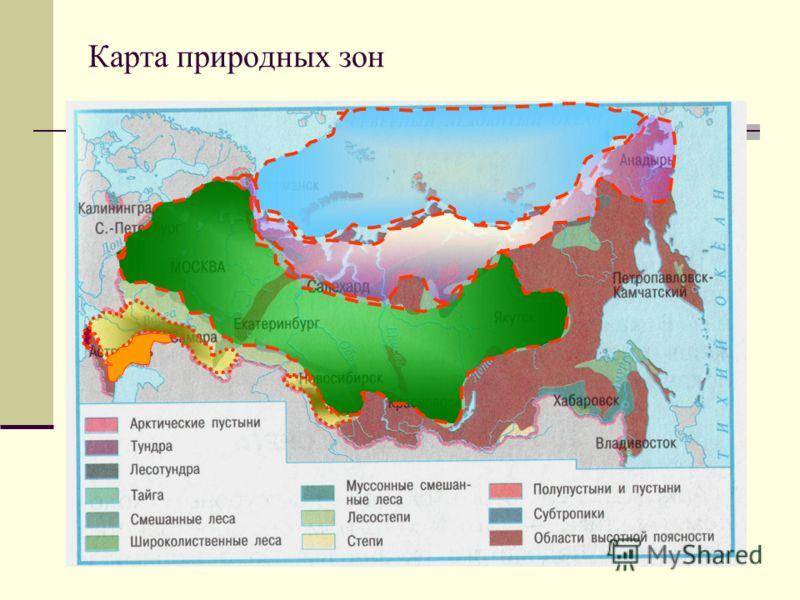 По природным зонам россии 4 класс