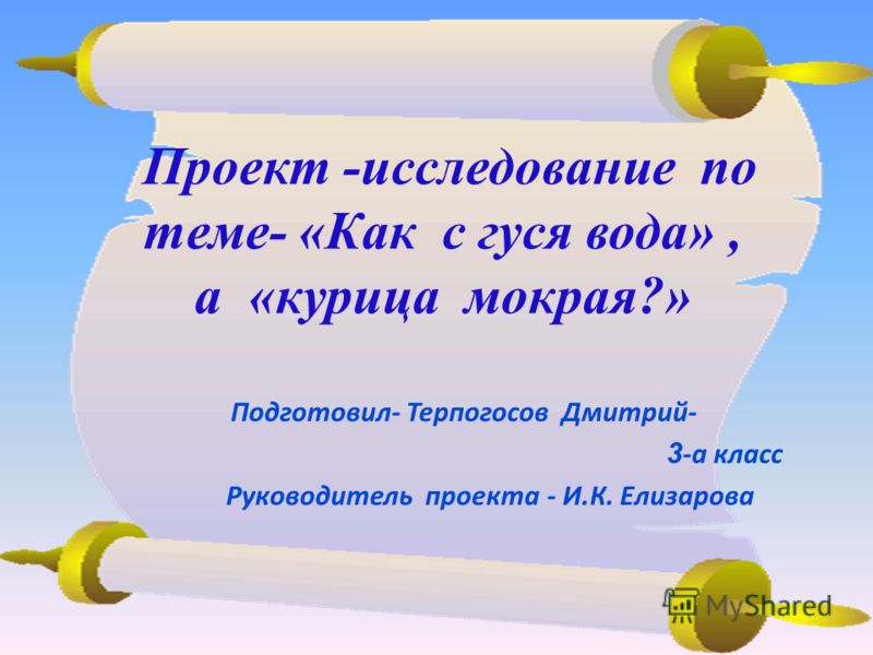 Проект -исследование по теме- «Как с гуся вода», а «курица мокрая?» Подготовил- Терпогосов Дмитрий- 3 -а класс Руководитель проекта - И.К. Елизарова