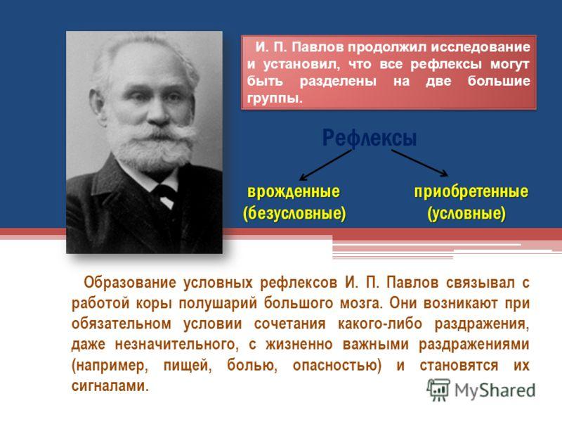 И. П. Павлов продолжил исследование и установил, что все рефлексы могут быть разделены на две большие группы. Образование условных рефлексов И. П. Павлов связывал с работой коры полушарий большого мозга. Они возникают при обязательном условии сочетан
