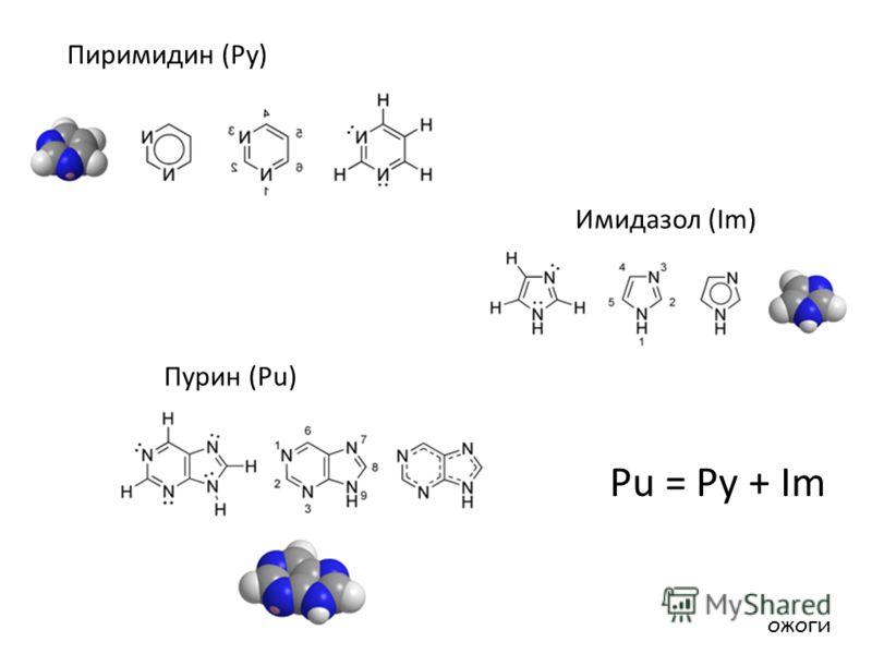 Пиримидин (Py) Пурин (Pu) Имидазол (Im) Pu = Py + Im ожоги