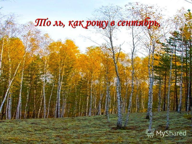 То ль, как рощу в сентябрь, То ль, как рощу в сентябрь,