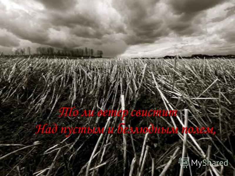 То ли ветер свистит Над пустым и безлюдным полем,