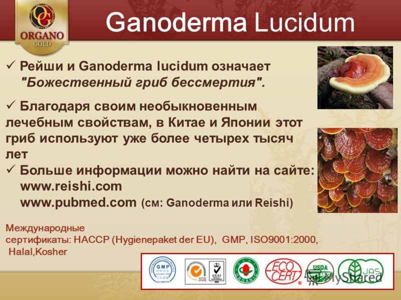 Ganoderma Lucidum Рейши и Ganoderma lucidum означает