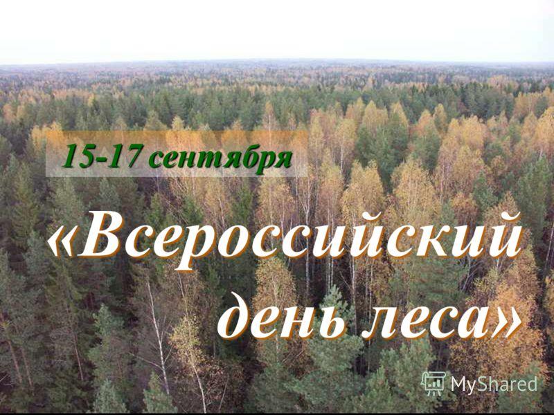 15-17 сентября «Всероссийский день леса»