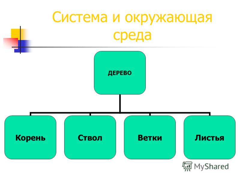 Система и окружающая среда ДЕРЕВО КореньСтволВеткиЛистья