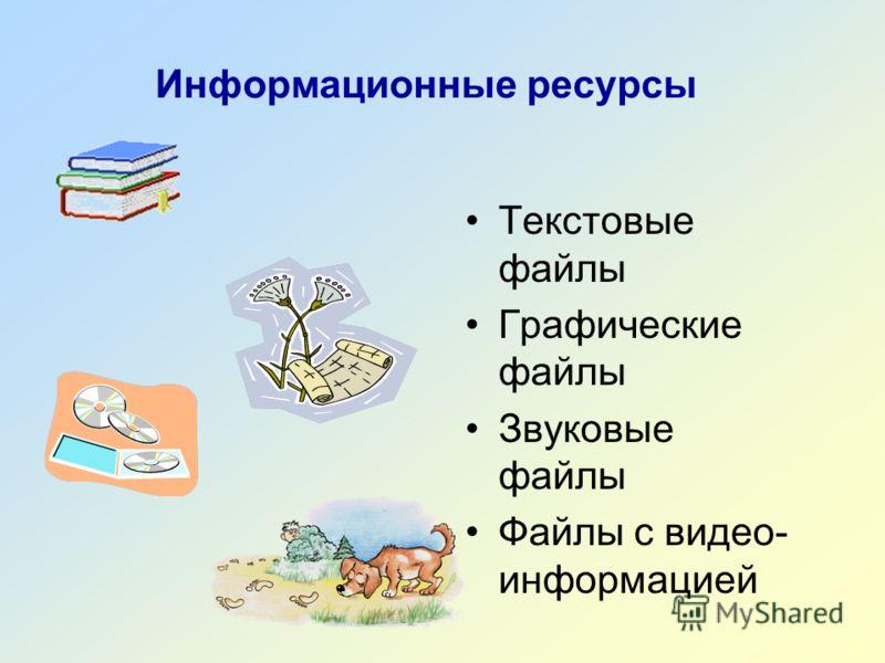 Информационные ресурсы Текстовые файлы Графические файлы Звуковые файлы Файлы с видео- информацией