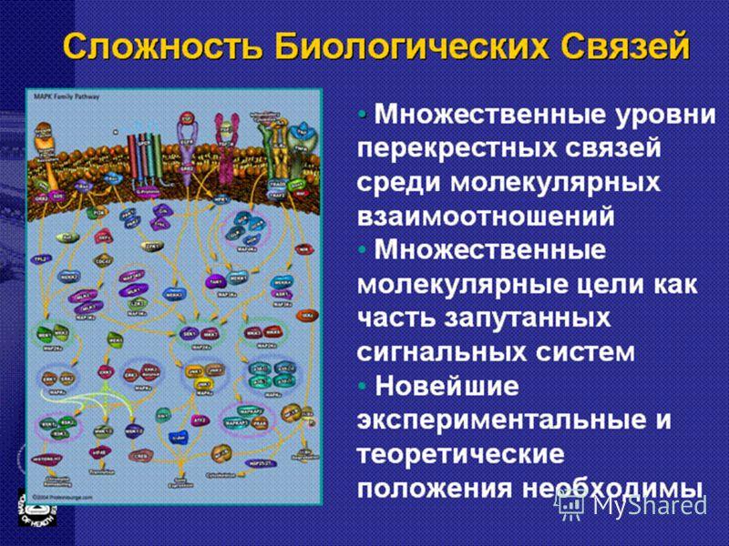 Сложность Биологических Связей Множественные уровни перекрестных связей среди молекулярных взаимоотношений Множественные молекулярные цели как часть запутанных сигнальных систем Новейшие экспериментальные и теоретические положения необходимы