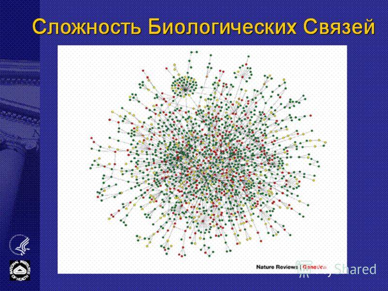 Сложность Биологических Связей