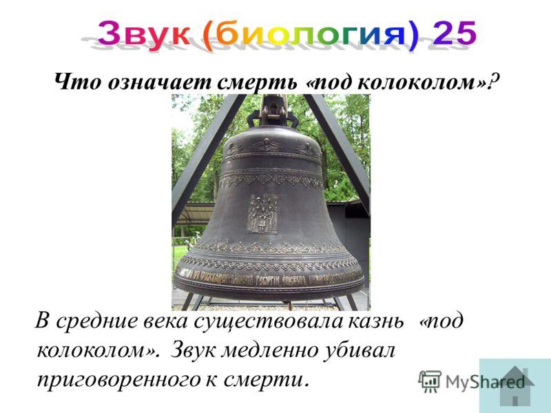 Что означает смерть « под колоколом »? В средние века существовала казнь « под колоколом ». Звук медленно убивал приговоренного к смерти.