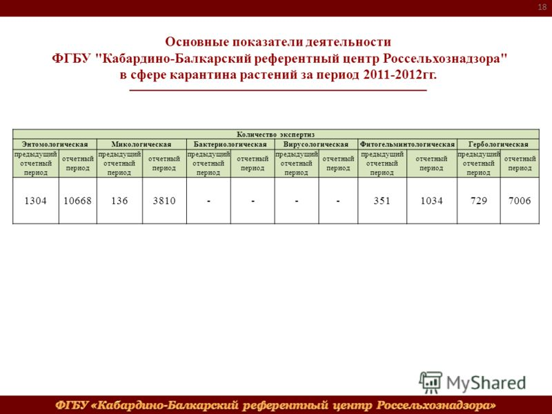 18 Количество экспертиз ЭнтомологическаяМикологическаяБактериологическаяВирусологическаяФитогельминтологическаяГербологическая предыдущий отчетный период отчетный период предыдущий отчетный период отчетный период предыдущий отчетный период отчетный п