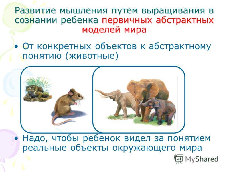 Развитие мышления путем выращивания в сознании ребенка первичных абстрактных моделей мира От конкретных объектов к абстрактному понятию (животные) Надо, чтобы ребенок видел за понятием реальные объекты окружающего мира