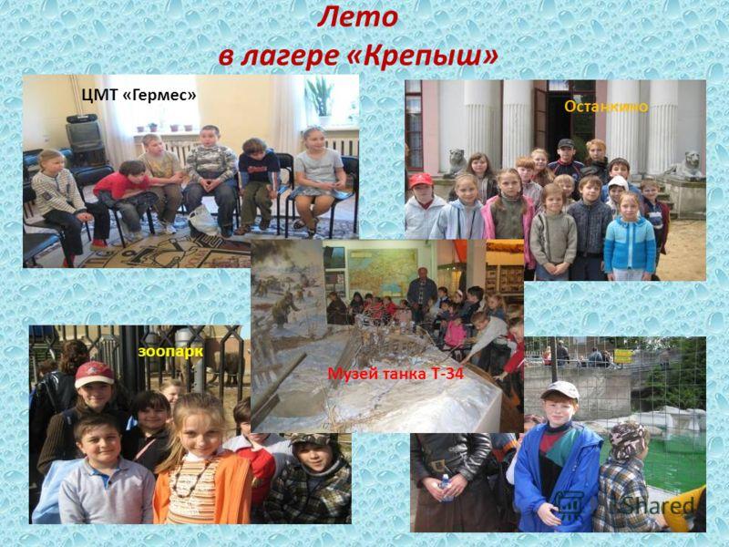 Лето в лагере «Крепыш» Останкино зоопарк Музей танка Т-34 ЦМТ «Гермес»