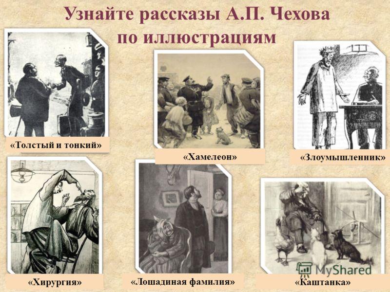 Узнайте рассказы А.П. Чехова по иллюстрациям «Каштанка » «Хирургия » «Злоумышленник » «Хамелеон » «Лошадиная фамилия » «Толстый и тонкий »